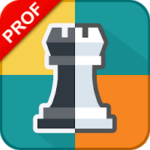 Download Chess PC Version   2017 Guide