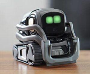 Home Robot- Alexa Controlled- Vector